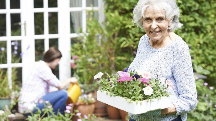 How you can help seniors avoid social isolation